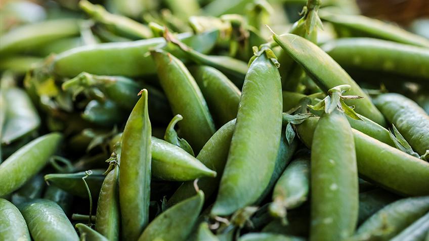 Green beans, Carriageworks Farmers Market