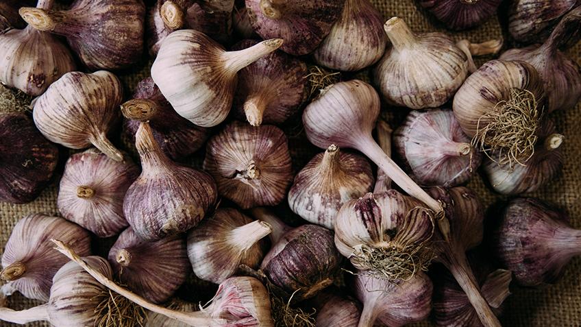 Garlic, Carriageworks Farmers Market