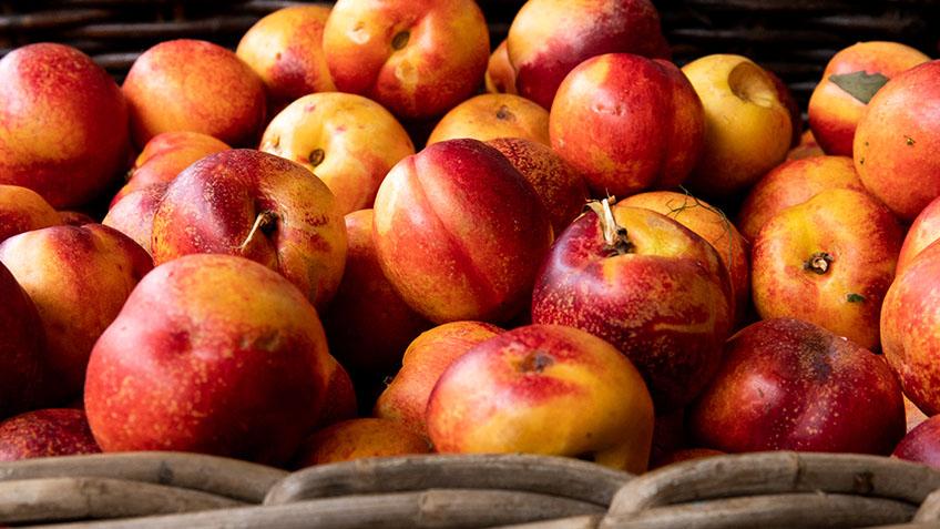 Carriageworks Farmers Market, Fresh seasonal produce, nectarine
